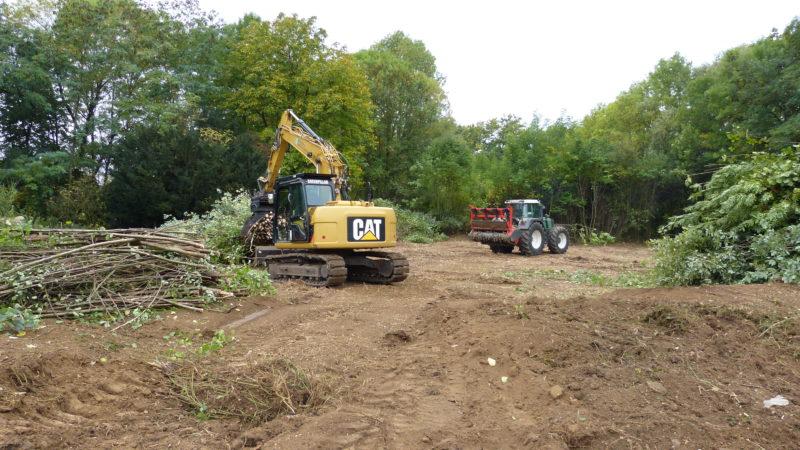 CAT 311D mit Sortiergreifer nach Holzung